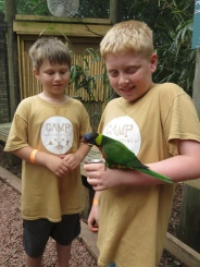 Feeding the Parakeets at the zoo